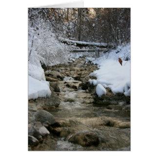 Winter Stream Card
