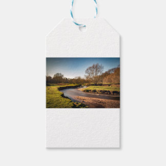 Winter Stroll Along The River Bollin Pack Of Gift Tags