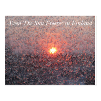 Winter Sun in Finland Postcard