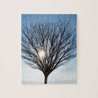 winter sun jigsaw puzzle