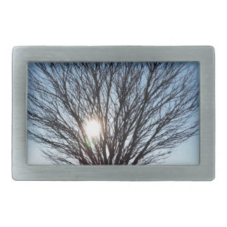 winter sun rectangular belt buckle