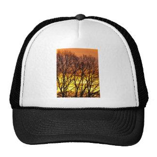 Winter Sunrise Mesh Hats