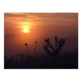 Winter sunset, Norfolk, England - Postcard