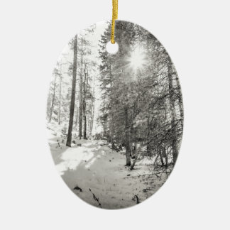 Winter Sunshine Forest Shades Of Gray Ceramic Oval Ornament