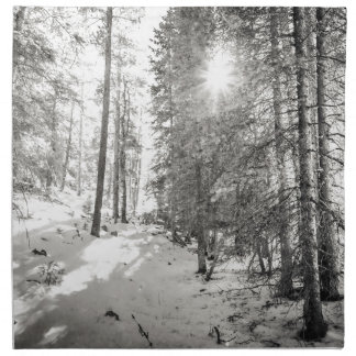 Winter Sunshine Forest Shades Of Gray Cloth Napkin