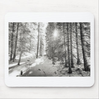 Winter Sunshine Forest Shades Of Gray Mouse Pad