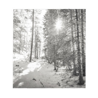 Winter Sunshine Forest Shades Of Gray Notepad