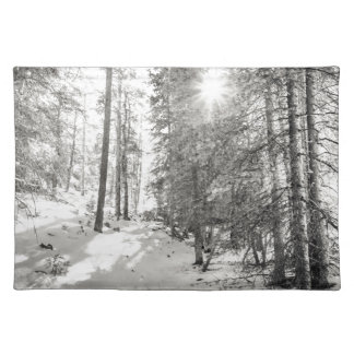Winter Sunshine Forest Shades Of Gray Placemat