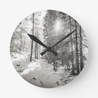 Winter Sunshine Forest Shades Of Gray Round Clock