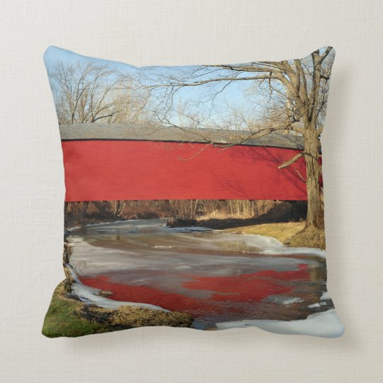 Winter Thaw American MoJo Pillow
