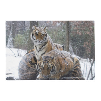 Winter Tigers Laminated Place Mat