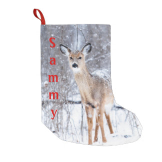 Winter Time Deer Stocking