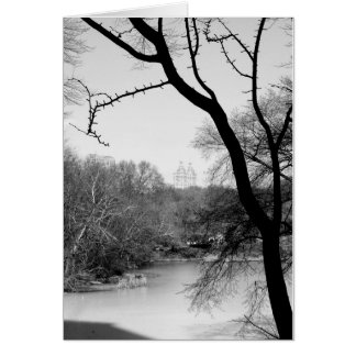 Winter Tree - Central Park NYC Card