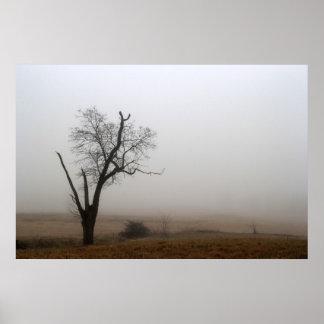 Winter Tree Foggy Meadow Poster