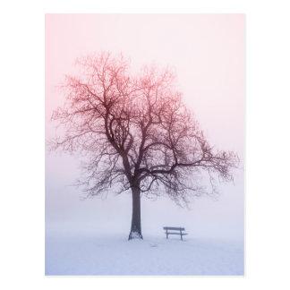 Winter tree in fog at sunrise postcard