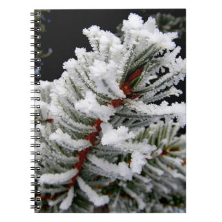 Winter Tree Notebook