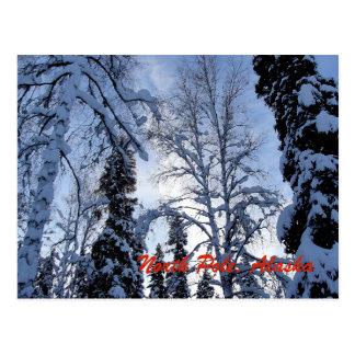 Winter Tree Scene from North Pole, Alaska Postcard
