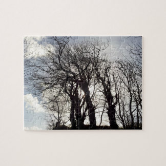 Winter Trees along a Country Lane Cornwall England Jigsaw Puzzle