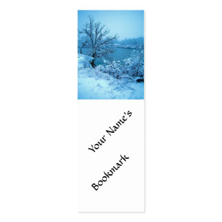 Winter Trees and Lake Double-Sided Mini Business Cards (Pack Of 20)