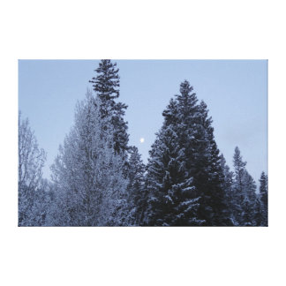 Winter Trees at Dawn Snow Landscape Photography Canvas Print