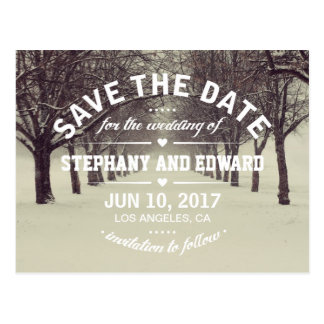 Winter Trees Avenue Stylish Save the Date Postcard