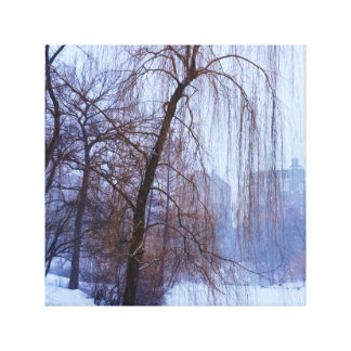 Winter Trees In Central Park Canvas Print