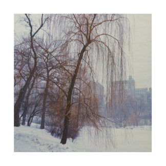 Winter Trees In Central Park Wood Print