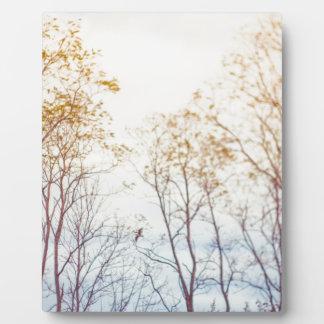 Winter Trees Plaque