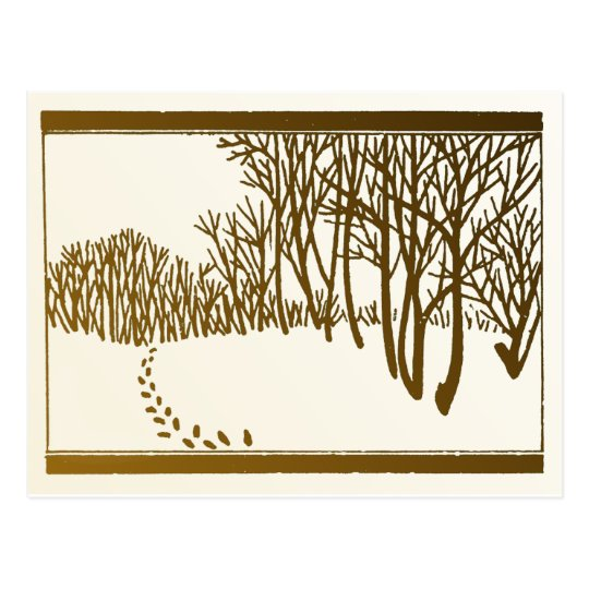 Winter Trees Postcard