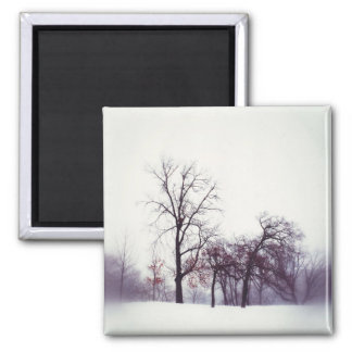 Winter Trees Square Magnet