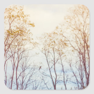 Winter Trees Square Sticker
