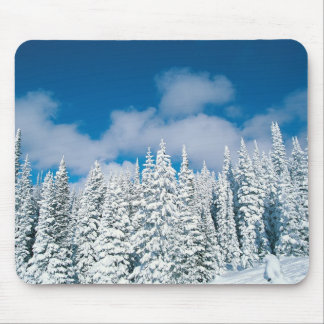 Winter trees, Steamboat, Colorado, USA Mouse Pad