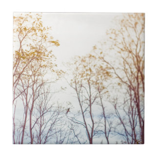 Winter Trees Tile