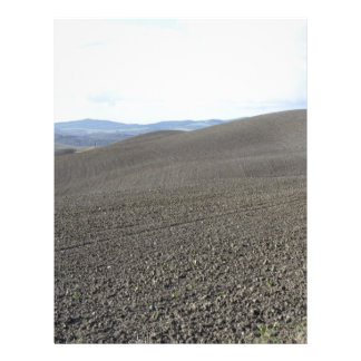 Winter Tuscany landscape with plowed fields Letterhead