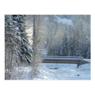 Winter up North Postcard