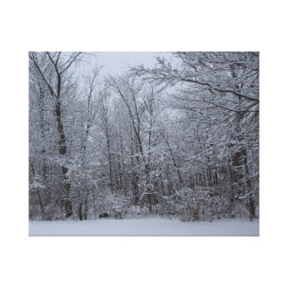 Winter Walk in the Woods Canvas Print
