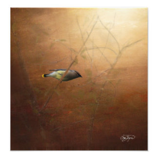 Winter Waxwing Photographic Art - Frame It! Photo Print