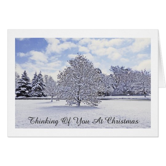 Winter White In Park/Thinking Of You At Christmas Card