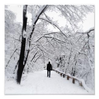 Winter Whiteout Photo Print