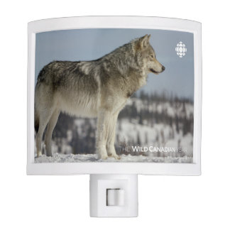 Winter - Wolf Night Lights