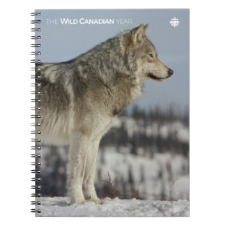 Winter - Wolf Notebook