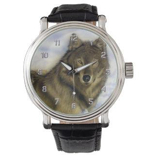 Winter Wolf Watch