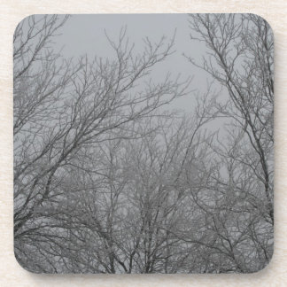 Winter Wonderland Coasters