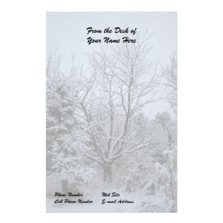 Winter Wonderland Custom Stationery