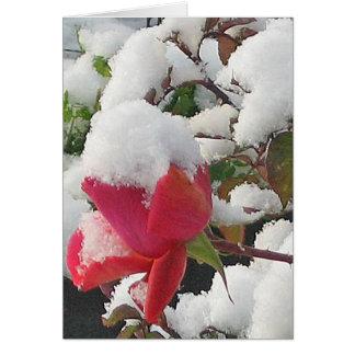 Winter Wonderland Note Card