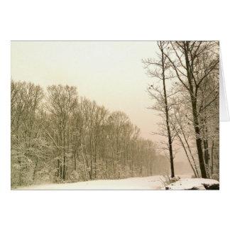 """""""Winter Wonderland"""" Photo Card"""
