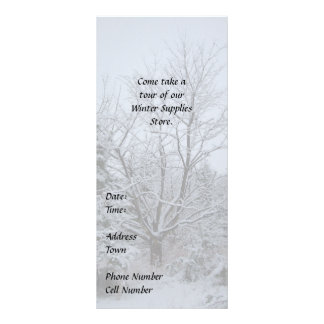 Winter Wonderland Rack Card