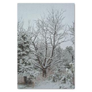 Winter Wonderland Tissue Paper