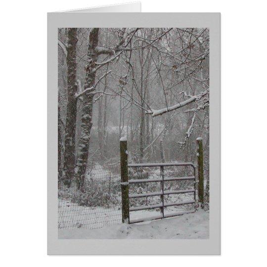 Winter woods snow scene greeting cards