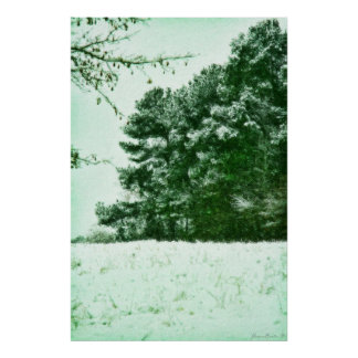 """Wintergreen"" Poster"